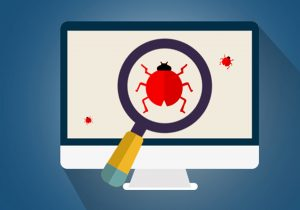 search for bugs